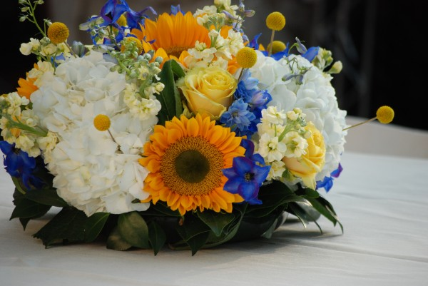 Cebolla Fine Flowers, Dallas Arboretum Wedding, Blue and Yellow Wedding Centerpieces, White Hydrangea, Yellow Sunflowers with Green Center, Blue Delphinium, Yellow Billy Balls, Yellow Roses, Design Tray