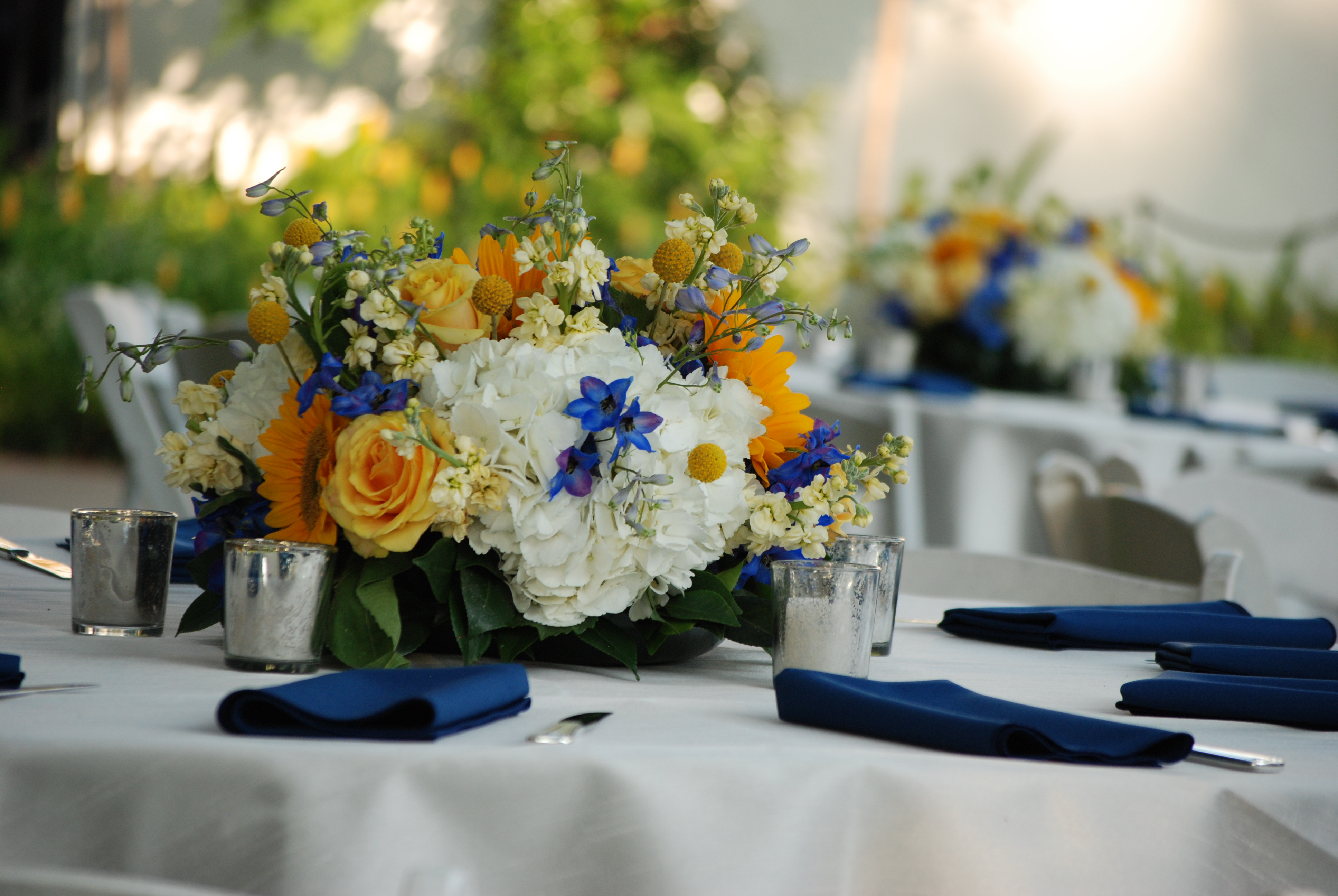 Blue yellow wedding at the dallas arboretum cebolla fine flowers cebolla fine flowers dallas arboretum wedding blue and yellow wedding centerpieces white hydrangea izmirmasajfo