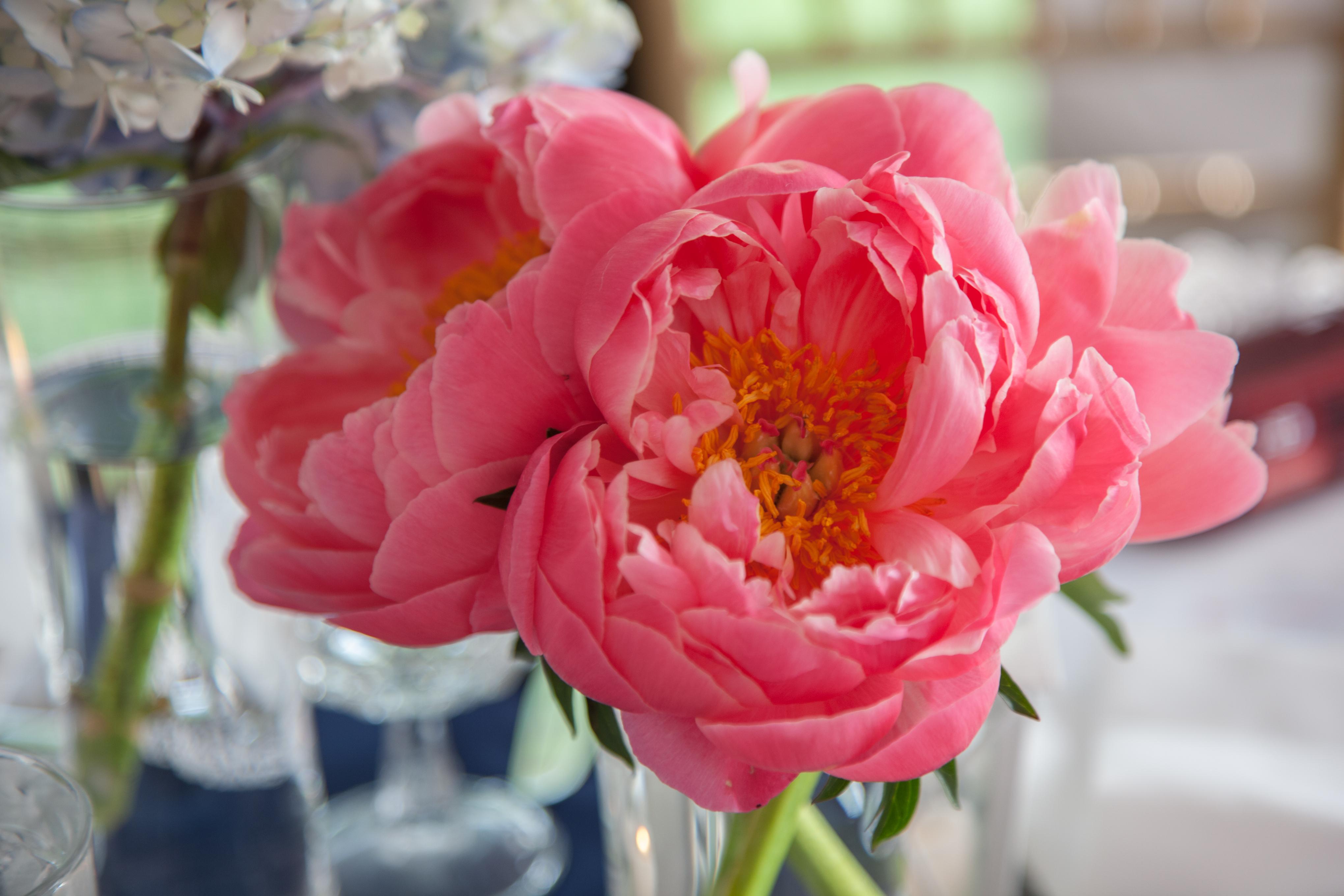 Dallas Wedding Flowers | Cebolla Fine Flowers